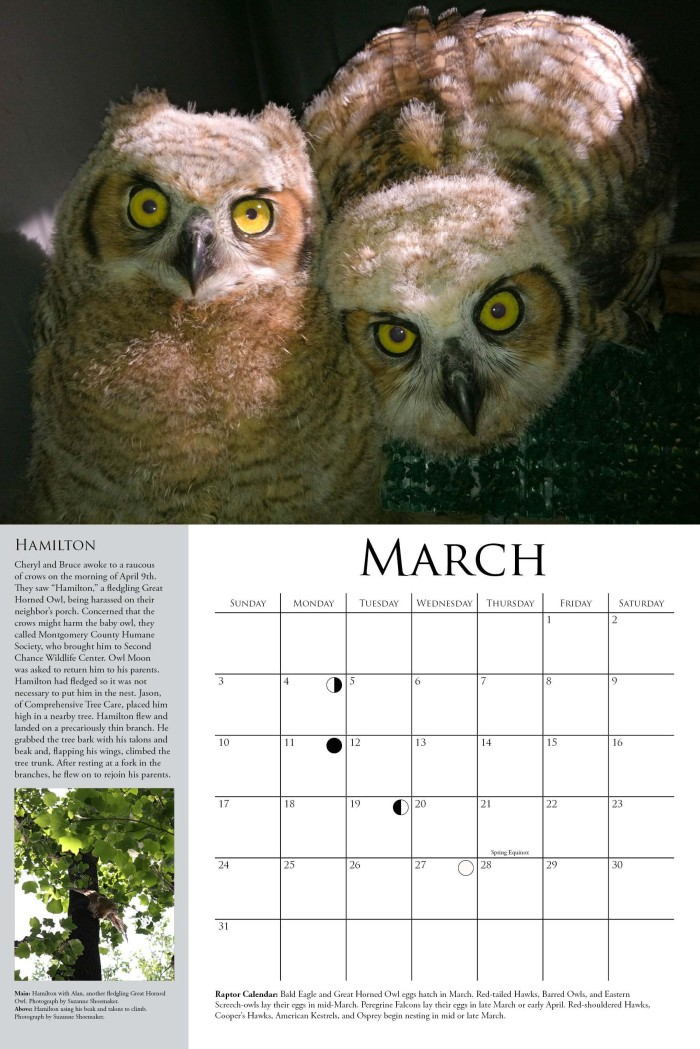 OMRC2013calendar-Sample-March